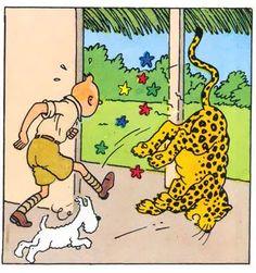 Livin' la vida Tintin || La vie de Tintin: Archive