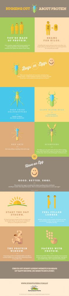 In many countries, Entomophagy, or eating insects is popular. They're relatively cheap and a great way to get protein in your diet. Edible Insects, Eggs, Farming, Countries, Protein, Campaign, Studio, Drinks, Food