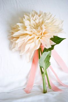 A single oversized dahlia bloom. Love this idea for a bouquet! {Photo by Erin Hearts Court via Project Wedding} Mix the ribbons to match the dresses. Single Flower Bouquet, Dahlia Bouquet, Unique Flowers, Bridal Flowers, Beautiful Flowers, Floral Wedding, Wedding Bouquets, Simple Bridesmaid Bouquets, Bridesmaid Gifts