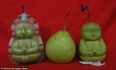 buddah pears. most amazing thing ever.