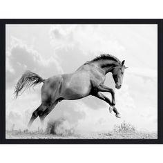 "FramedCanvasArt.com ""Flying Horse"" Framed Plexiglass Wall Art"
