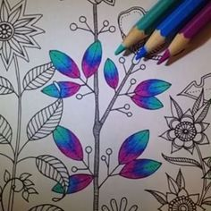 Leaves on a Stem Secret Garden Coloring Book, Coloring Book Art, Colouring Pages, Adult Coloring, Coloring Tips, Colored Pencil Tutorial, Colored Pencil Techniques, Prismacolor, Copics