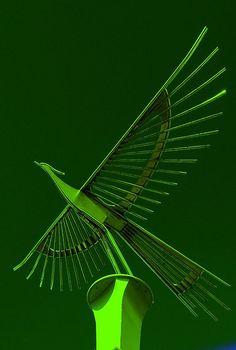 Green Dove (byFoNgEtZ)