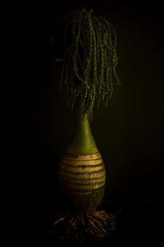 Botanical Sculpture by Makoto AZUMA, Japan