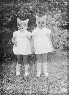 sister cats- @Patricia Clements and @Marian Clements i'm lookin at you