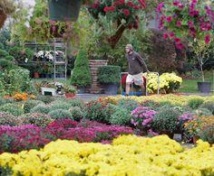 Best Gardening Nursery Oakland