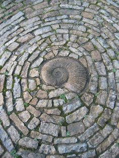 Spiral Mosaic in Chalice Well Gardens, Glastonbury  TIMELESS CONCEPT THE SPIRAL, MOST UNIVERSAL PREHISTORIC SYMBOL SEEN GLOBALLY, INCLUDING ISLANDS, Want a Mediation walk spiral o the property tucked amongst trees, like this possibly a real fossil considering where and when made ..repoduce with my fav fossil found, upsized in concrete!
