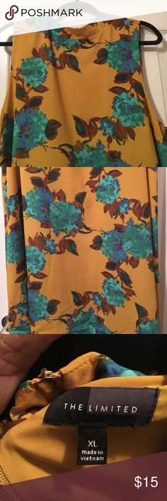 Beautiful sleeveless 100 Polyester dress. Beautiful dress with lining never worn. Dress is sleeveless and can de dresses up or down. The Limited Dresses