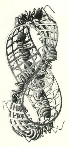 MC Escher, Moebius Strip II (Red Ants), 1963 | Cave to Canvas