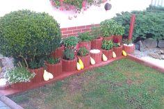 Naša bylinková záhradka.