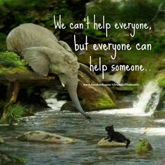 We can't help everyone, but everyone can help someone ... <3