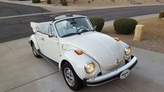 1979 Volkswagen Beetle Convertible presented as Lot at Pomona, CA Volkswagen Convertible, Volkswagen Beetle Vintage, Vw Cabrio, Old Bug, Vw Group, Car Upholstery, Car Covers, Vw Beetles, Dream Cars