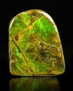 Ammolite promises transformation. Helps to awaken awareness of evolutionary shifts in consciousness – in us and in the world. One of the key crystals that we can work with in order to be a conscious and active leader of this shifting. Specifically assists in the activation of all physical and etheric DNA strands. 1st (root) chakra. Eases childbirth.
