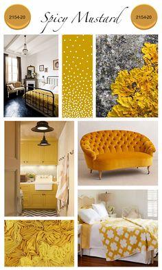 01_benjamin_moore_Spicy_Mustard_2154-20