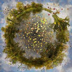 un mondo di verde