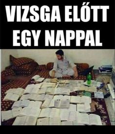 mint a Luca felkelés előtt egy nappal xDDD Funny Photos, Funny Images, Lol So True, Funny Pins, Funny Moments, Haha, Jokes, School, Fanny Pics