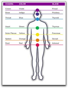 chakra with respecitve glands and color  Source: http://healingfordummies.wordpress.com/