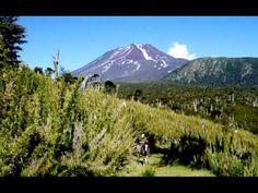 Präsentation Fundo Laguna Blanca #fundolagunablanca #chile #araucania #nature #tourism Volcano, Mount Rainier, Chile, Tourism, River, Mountains, Landscape, World, Nature