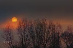 Misty Sunrise - null Sunrise, Celestial, Outdoor, Outdoors, Sunrises, Sunrise Photography, Outdoor Living, Garden