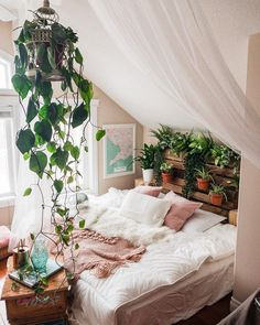 cozy bedroom filled with plants
