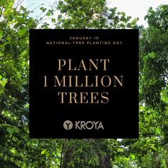 Celebrate Indonesia's National Tree Planting Day, January 10. #kroyafloors #forest #wwf  www.kroyafloors.com Tree Planting, Trees To Plant, January 10, Letter Board, Floors, Lettering, Celebrities, Day, Plants