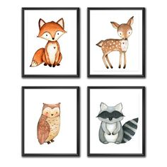 Adorable animal prints for a nature woodland forest theme baby room. Owl, raccoon, deer, and fox