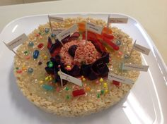 biology projects Biology Project: Candy Cell by LiliNyan-tan on deviantART 3d Animal Cell Project, Edible Cell Project, Plant Cell Project, Cell Model Project, Biology Projects, Stem Projects, Science Projects, School Projects, Fair Projects