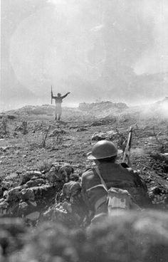 Αντάρτης παραδίνεται στον Ελληνικό Στρατό (1948)