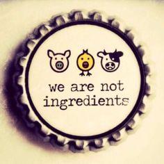 Vegan Magnet We Are Not Ingredients Bottle Cap por ZuliDesigns Vegetarian Lifestyle, Vegetarian Recipes, Vegetarian Funny, Vegetarian Quotes, Going Vegetarian, Vegan Quotes, Vegan Memes, Vegan Humor, Why Vegan