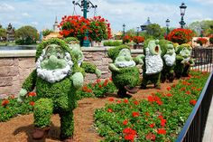 One of the best things about Disney is their fabulous landscaping! Go to their Flower & Garden Festival they have each spring if you can.