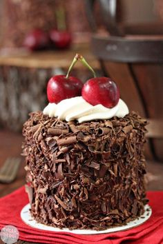Black Forest Mini Cakes are mini layer cakes filled with moist chocolate cake, Kirsch syrup, chocolate pastry cream, and fresh cherries. Great Desserts, Mini Desserts, Holiday Desserts, Cake Recipes, Dessert Recipes, Dessert Ideas, Chocolate Pastry, Chocolate Cake, Small Cake