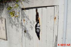 Artistas interagem com o ambiente urbano para dar vida a suas obras   Catraca Livre