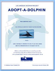 Cool way to help dolphins and teach kids too