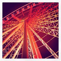 Brisbane Wheel Ferris Wheels, Brisbane, Places To Go, Balloons, Fair Grounds, Bucket, Australia, Lights, Photography