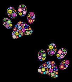 Illustration of illustration of floral animal paw print on black background vector art, clipart and stock vectors. Dog Canvas Painting, Dot Art Painting, Paw Print Art, Skyline Painting, Graffiti Lettering, Hippie Art, Canvas Prints, Art Prints, Floral Illustrations