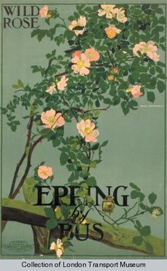 Vintage Railway Travel Poster - Epping by bus -  UK - by Emilio Camilio Leopoldo Tafani, 1915 (Published by Underground Electric Railways Company). Ltd.