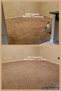 Carpet Tiles, Family Business, Cleaning, Pets, Carpet Squares, Home Cleaning, Animals And Pets