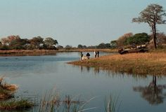 caprivi strip namibian accommodation as featured by great escapes Travel Route, Us Travel, Africa Travel, Continents, Wonders Of The World, Places To Go, Tours, Island, Nature