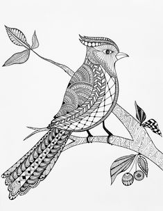 My second zentangle class learned to make patterns in this bird. Doodle Art Drawing, Zentangle Drawings, Mandala Drawing, Zentangles, Zentangle Art Ideas, Mandala Sketch, Zentangle Patterns, Mandala Art Lesson, Mandala Artwork