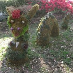 Nessie topiary decorated with succulents, shells and coral. Are you kidding me! This is so awesome! Topiary Garden, Edible Garden, Outdoor Sculpture, Garden Sculpture, Moon Garden, Trees And Shrubs, Medicinal Plants, Succulents Garden, Yard Art