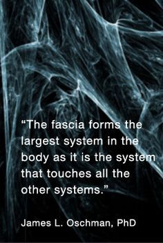 """""""The fascia forms the largest system in the body as it is the system that touches all the other systems.""""  James L. Oschman, PhD"""