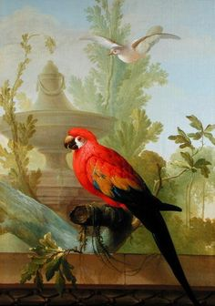 A Macaw and a Dove in an ornamental Garden, 1772 by Gerrit van den Heuvel