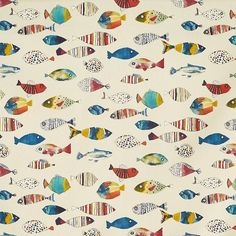 A characterful collection of prints inspired by a shoreline stroll and playful adventurous themes. Birds and sea life. Stuart Graham, Gone Fishing, Fishing Poles, Fishing Tackle, Cafeteria Design, Jungle Scene, Walleye Fishing, Carp Fishing, Animal Alphabet