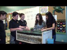 Leewood K-8 Center - Closing the gender gap in STEM Education.