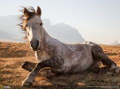 concurso de fotos National Geographic menc