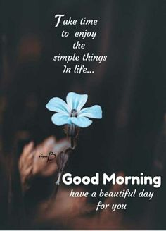 Happy Good Morning Quotes, Good Day Quotes, Morning Thoughts, Morning Greetings Quotes, Good Morning Messages, Good Morning Good Night, Good Morning Wishes, Deep Thoughts, Morning Msg