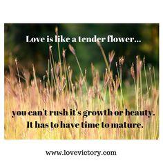 Love is like a tender flower...