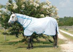 Amigo Flysheet by Amigo. $97.20. From the original HORSEWARE, Ireland. Amigo blankets/sheets feature most of the same design elements as the Rambo and Rhino line, but at a more affordable price. Horseware's proven track record with Rambo and Rhino products tells you that you will be getting the best product of your money with the Amigo line. Super-soft, breathable, lightweight flysheet that is sure to keep your horse comfortable this summer. Offers head to tail protectio...