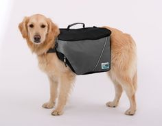 Doggles Dog Backpack Extreme Small GrayBlack *** Learn more by visiting the image link. #DogPacks