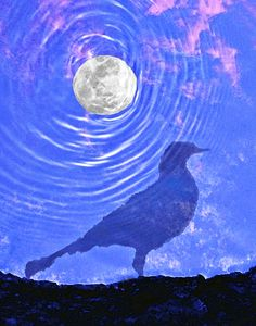Killing Time To Live In the Moment, by Craig Royal. Prints available. #art #philosophy #transcedence #photography #wallart #conceptual #moon #birds